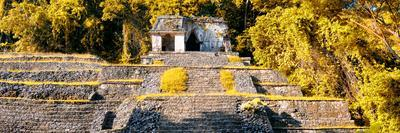¡Viva Mexico! Panoramic Collection - Mayan Ruins in Palenque with Fall Colors