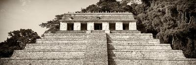 ¡Viva Mexico! Panoramic Collection - Mayan Temple of Inscriptions - Palenque IV