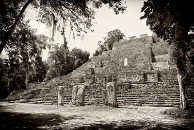 ¡Viva Mexico! B&W Collection - Pyramid of the ancient Mayan city of Calakmul