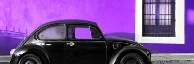¡Viva Mexico! Panoramic Collection - The Black VW Beetle Car with Purple Wall