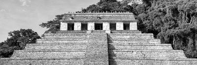 ¡Viva Mexico! Panoramic Collection - Mayan Temple of Inscriptions - Palenque V