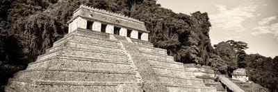 ¡Viva Mexico! Panoramic Collection - Mayan Temple of Inscriptions - Palenque VII