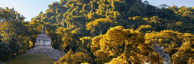 ¡Viva Mexico! Panoramic Collection - Mayan Ruins in Palenque at Sunrise with Fall Colors