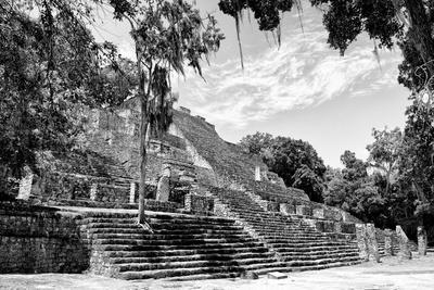 ¡Viva Mexico! B&W Collection - Pyramid of the ancient Mayan city of Calakmul IV