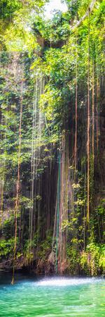 ¡Viva Mexico! Panoramic Collection - Hanging Roots of Ik-Kil Cenote IV