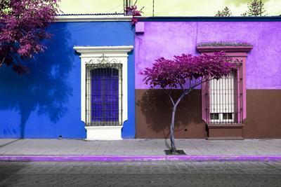 ¡Viva Mexico! Collection - Mexican Colorful Facades IV