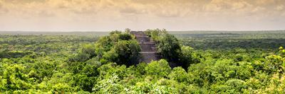 ¡Viva Mexico! Panoramic Collection - Calakmul in the Mexican Jungle at Sunset