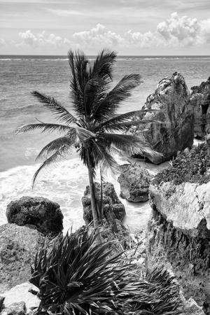 ¡Viva Mexico! B&W Collection - Caribbean Coastline in Tulum
