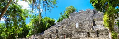 ¡Viva Mexico! Panoramic Collection - Pyramyd of the ancient Mayan City II - Calakmul