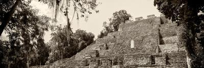 ¡Viva Mexico! Panoramic Collection - Pyramyd of the ancient Mayan City - Calakmul