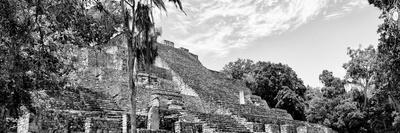 ¡Viva Mexico! Panoramic Collection - Pyramyd of the ancient Mayan City VII - Calakmul