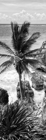 ?Viva Mexico! Panoramic Collection - Caribbean Coastline - Tulum X