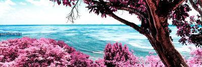 ¡Viva Mexico! Panoramic Collection - Isla Mujeres Coastline IV