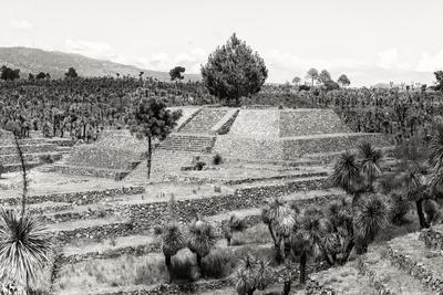 ¡Viva Mexico! B&W Collection - Pyramid of Puebla VII (Cantona Ruins)