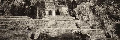 ¡Viva Mexico! Panoramic Collection - Mayan Ruins in Palenque