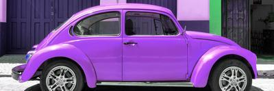 ¡Viva Mexico! Panoramic Collection - The Purple Beetle Car