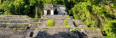 ¡Viva Mexico! Panoramic Collection - Mayan Ruins in Palenque II
