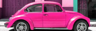 ¡Viva Mexico! Panoramic Collection - The Deep Pink Beetle Car
