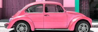 ¡Viva Mexico! Panoramic Collection - The Pink Beetle Car