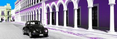 ¡Viva Mexico! Panoramic Collection - Black VW Beetle and Plum Architecture
