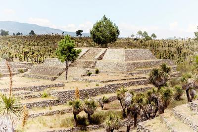 ¡Viva Mexico! Collection - Pyramid of Cantona XIV - Puebla