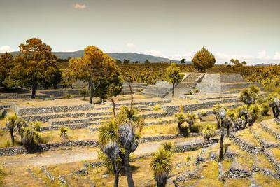 ¡Viva Mexico! Collection - Pyramid of Cantona XII - Puebla