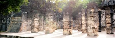¡Viva Mexico! Panoramic Collection - One Thousand Mayan Columns - Chichen Itza II