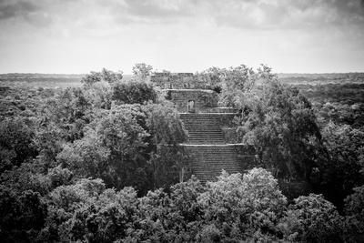 ¡Viva Mexico! B&W Collection - Pyramid in Mayan City of Calakmul