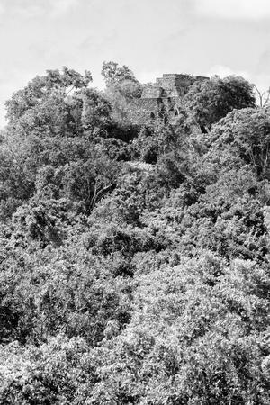 ¡Viva Mexico! B&W Collection - Ancient Maya City within the jungle II - Calakmul