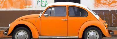 ¡Viva Mexico! Panoramic Collection - Orange VW Beetle