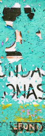 ¡Viva Mexico! Panoramic Collection - Coral Green Street Wall Art