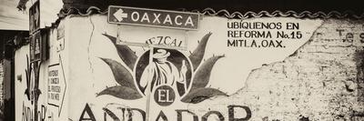 ¡Viva Mexico! Panoramic Collection - Oaxaca Direction III