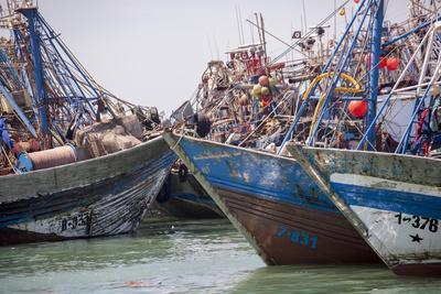 Africa, Western Sahara, Dakhla. Group of Rusting and Aged Fishing Boats