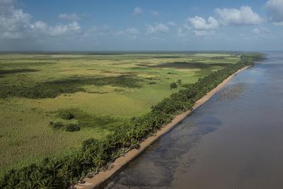Shell Beach, North Guyana