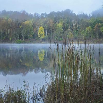 Fog Drifts of the Water of Lackawanna Lake, Lackawanna State Park, Pennsylvania, Usa