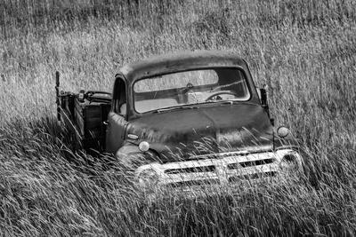 Washington State, Palouse. B&W of Vintage Studebaker Pickup Truck in Field