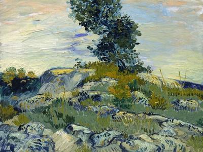 Rocks, 1888