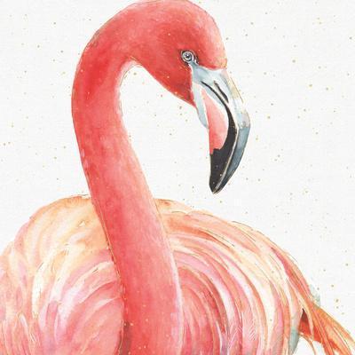 Gracefully Pink II
