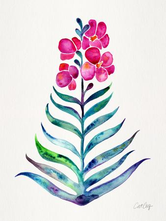 Fuchsia and Indigo Orchid Bloom