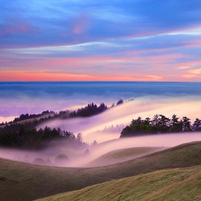Beautiful Nature Scene, Mount Tamalpais, Marin County, California