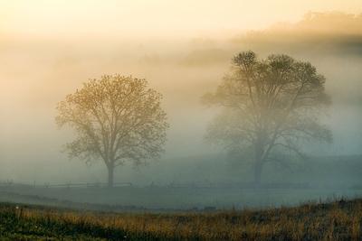 Misty Battlefield, Gettysburg National Military Park, Pennsylvania, USA