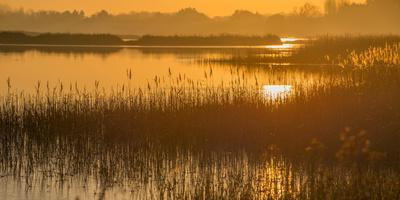 Dawn on the River Alde
