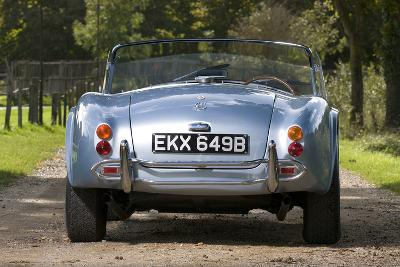 1964 AC Cobra MKII 289