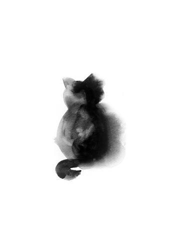 Contempo Cat I