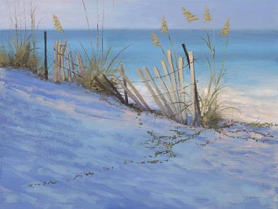 Sand & Sea View