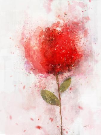 Exuberant Floral