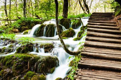 Wooden Track near A Forest Waterfall in Plitvice Lakes National Park, Croatia