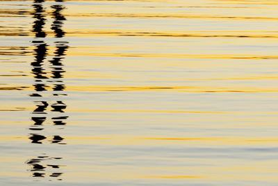 Abstract Reflections in San Diego Harbort, San Diego, California, USA