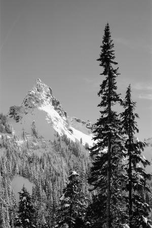 Snow-Covered Mountain, Cascade Range, Mt Rainier National Park, Washington, USA