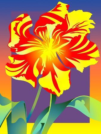 Close Up of Flower on Colored Background
